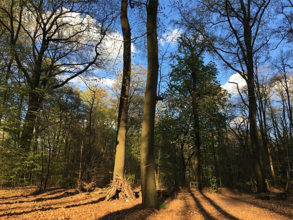 Reinickendorf: Miles away?