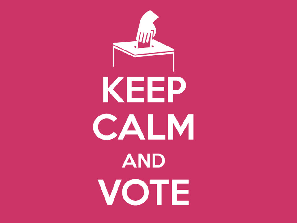 Last-minute panic before voting? You'll find the solutions to your worries below